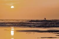 Silhouette of manpaddleboarding, Florida, USA