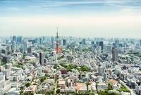 Tokyo tower at daytime, Tokyo, Japan 11098054218| 写真素材・ストックフォト・画像・イラスト素材|アマナイメージズ