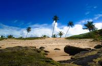 Arembepe beach, Brazil