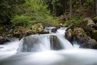 Scenic cascade in long exposure, Canada