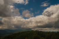 Fluffy clouds over forest on hills