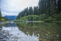 Smith River, Jedediah Smith Redwoods State Park, California, USA