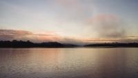 Amazon at dawn, Rio Juma, Brazil