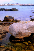 Boulder in tidal pool, Nova Scotia, Canada