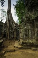 Temple at Angkor Thom, Angkor, Siem Reap Province, Cambodia
