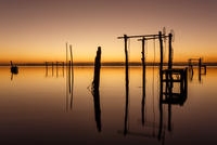 Wooden poles reflecting in water, Brazil