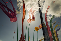 Kites in cloudy sky, Cervia, Italy