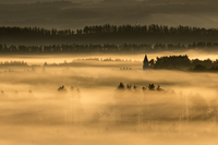 Fog above land at dawn, Biei, Hokkaido, Japan