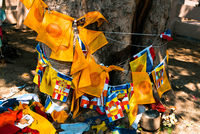 Buddhist prayer flags around tree trunk, Sanchi, Madhya Pradesh, India
