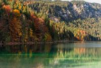 Eibsee - Autumn