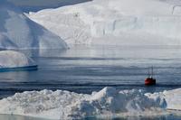 Cruise among icebergs