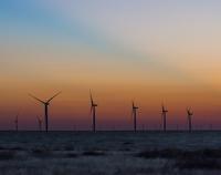 Field of Windmills at Dusk