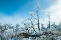 Frozen 11098063096| 写真素材・ストックフォト・画像・イラスト素材|アマナイメージズ