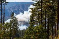 Dog Rock Fire, Yosemite