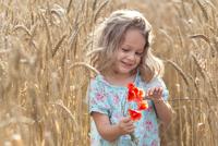 In wheat