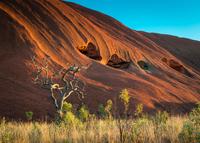 Uluru rock detail