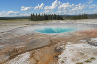 Geyser in national park