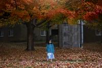 Portrait of girl (4-5) standing under autumn tree