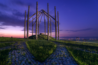 Wooden sculpture with electrical poles at sunset