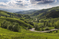 Road in valley of green rolling hills