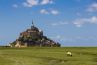 Mont St. Michel over grass field in fair weather, Normandy, France