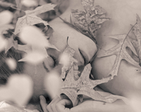 Leaves lying on nude woman in grayscale