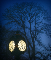 Street post with clock at night and bare tree