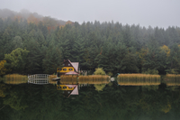 House in forest on lakeshore