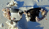 Close-up of dirty sunglasses lying on beach