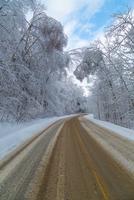 Road through winter landscape, Canada