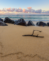 Stick on beach, Poipu, Kauai, Hawaii, USA