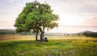 Man sitting by lone tree in meadow, Portugal