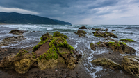 Seascape with algae on beach and storm clouds