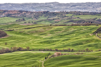 Val d'Orcia rolling landscape, San Quirico d'Orcia, Siena, Italy