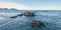 Ocean rocks, Kaikoura, New Zealand