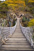 Suspension bridge, Jerecuaro, Guanajuato, Mexico
