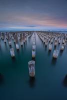 Wooden posts of Princes Pier, Melbourne, Victoria, Australia