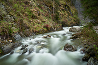Mountain stream in gorge, Dolomites, Trentino-Alto Adige, Italy