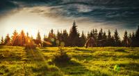 Sunset over wild horses grazing in meadow, Ukraine