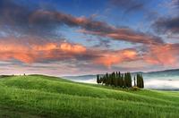 Val dOrcia green hill at dusk, San Quirico dOrcia, Siena, Italy