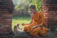 Buddhist monk boy (13-15) playing with kitten, Thailand 11098073257| 写真素材・ストックフォト・画像・イラスト素材|アマナイメージズ
