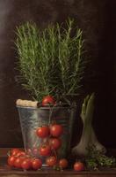 Rosemary and tomatoes 11098074188| 写真素材・ストックフォト・画像・イラスト素材|アマナイメージズ