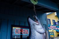Open (Alaska, USA)