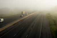 Caution: Driving Through Fog May Be Beautiful