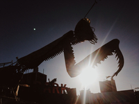 Full moon terror 11098074440| 写真素材・ストックフォト・画像・イラスト素材|アマナイメージズ