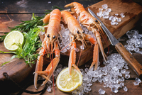 Three Langoustines