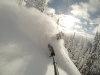 Powder Skiing GoPro Selfie