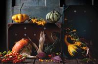 Pumpkin's Collection