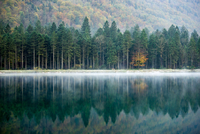 Colorful Autumn at the Lake