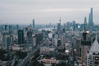 Shanghai Grey